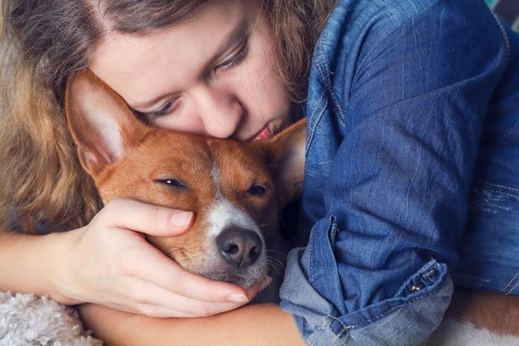 signs a dog is dying help your dog through it