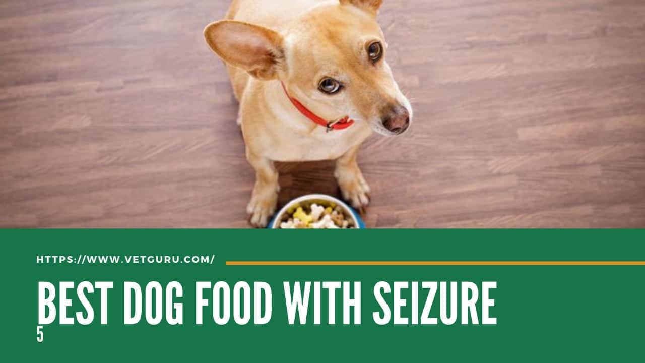 best dog food for dog with seizure