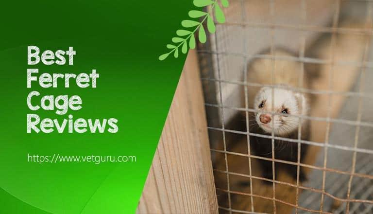 best ferret cage