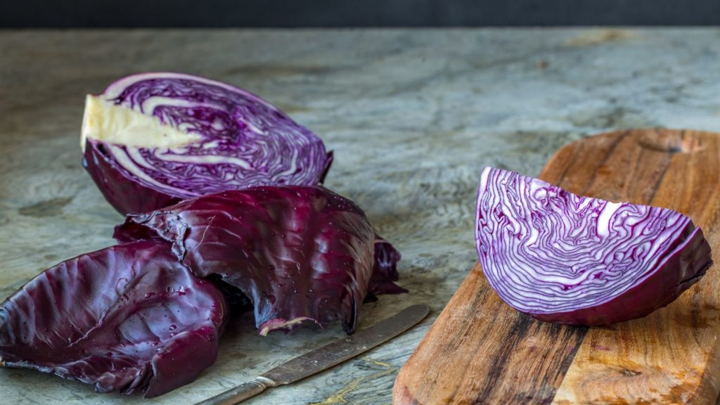 Can Red Cabbage Kill Hamsters