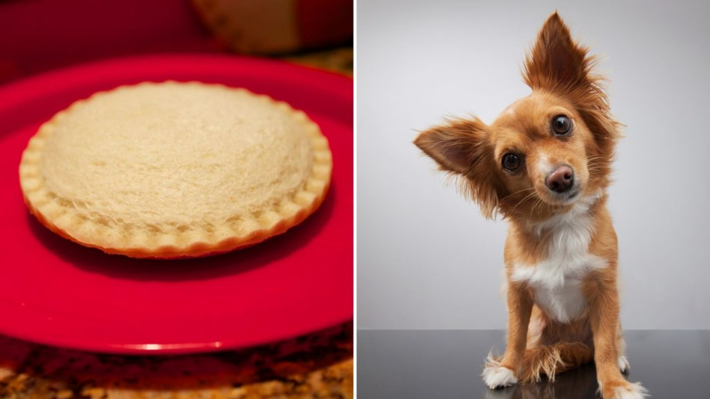 Health Benefits of Uncrustables for Dogs