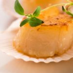 How to Prepare Scallops for Dogs