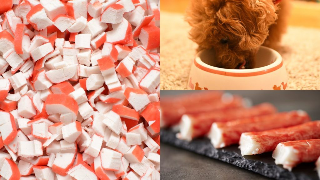 can dogs eat crab sticks