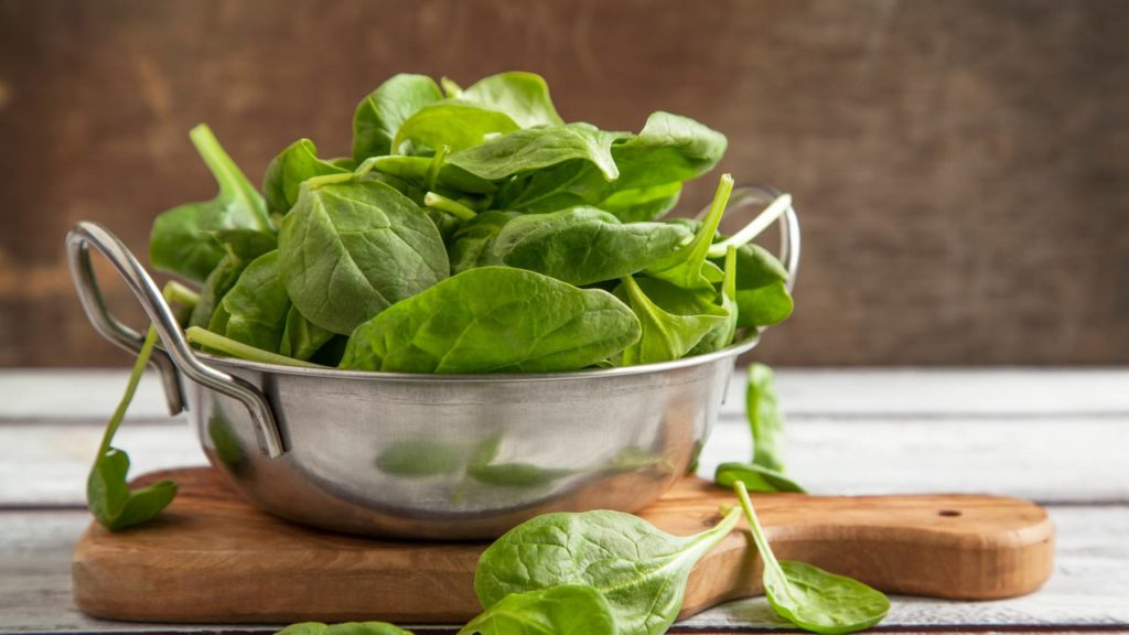spinach for cats